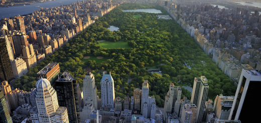 Ground Lease in NYC Real Estate